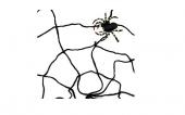 Паяжина
